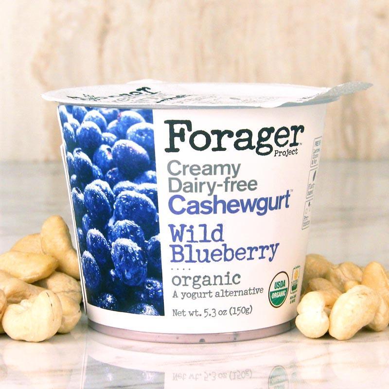 Forager_Cashewgurt_Blueberry_01_Web_1024x1024.jpg